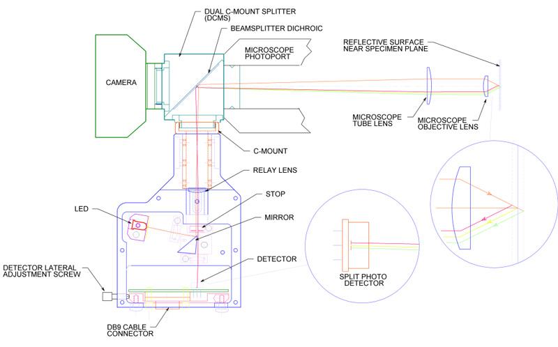 CRISP Diagram